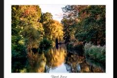 Zapach-Jesieni