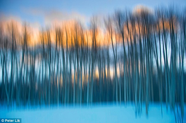 Illusion by Peter Lik