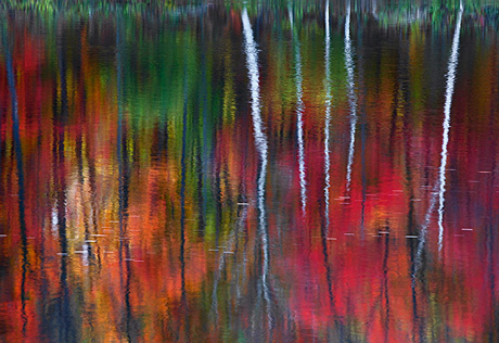 One by Peter Lik